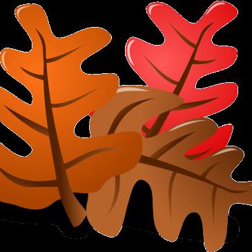 Bąbelki witają jesień