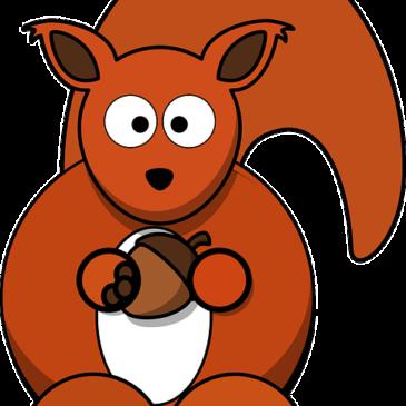 Praca plastyczna – Wiewiórki