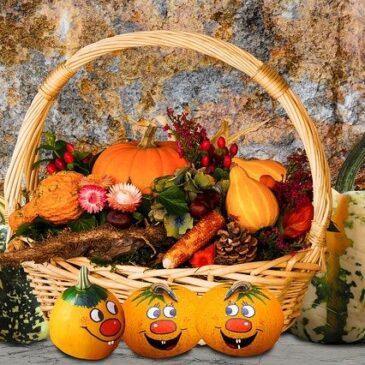Tuptusie poznają jesienne warzywa i owoce